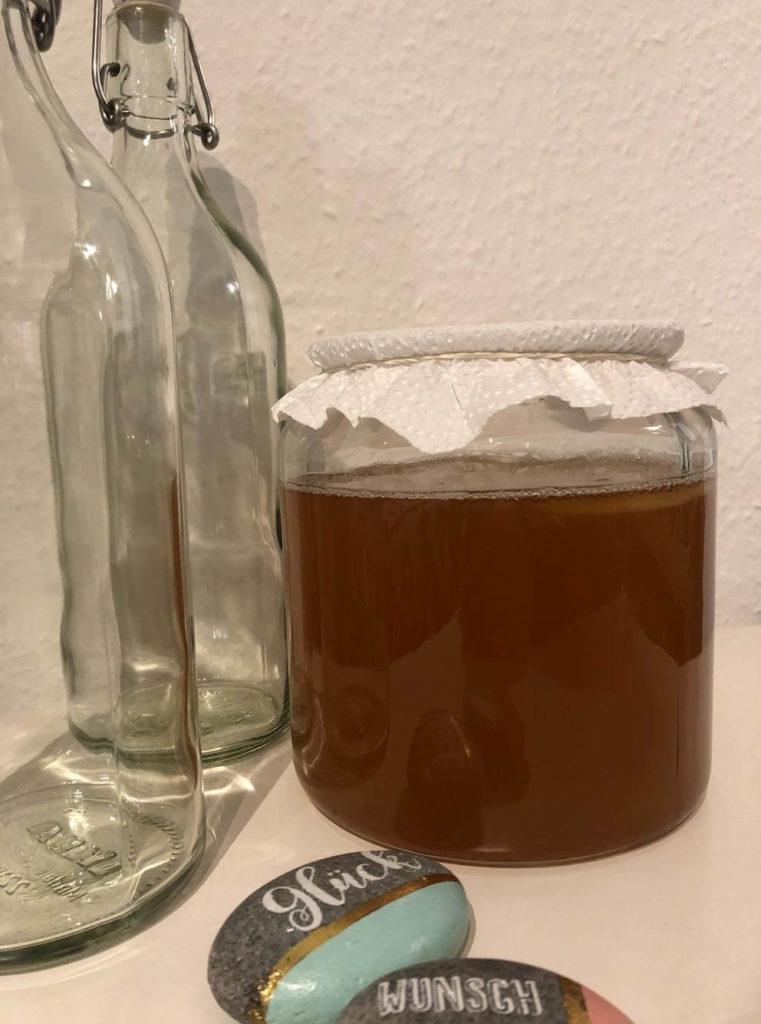 Kombucha fermentieren